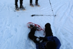 snowshoeing_1_20130214_1111360771cfbd