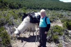 patagonia_4_20130120_152748516878d7